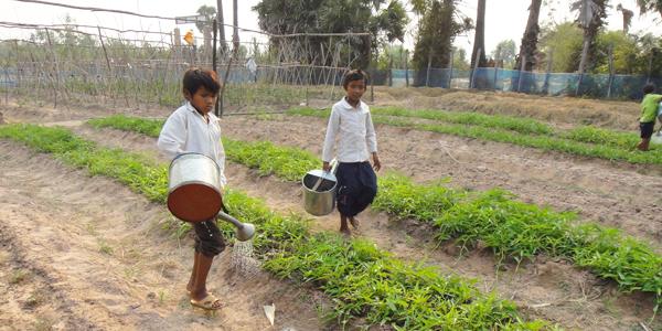 Agriculture Rural Cambodia Children