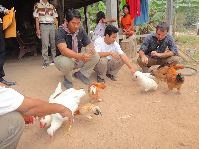 Livestock and Effective Microorganisms Rural Cambodia 5