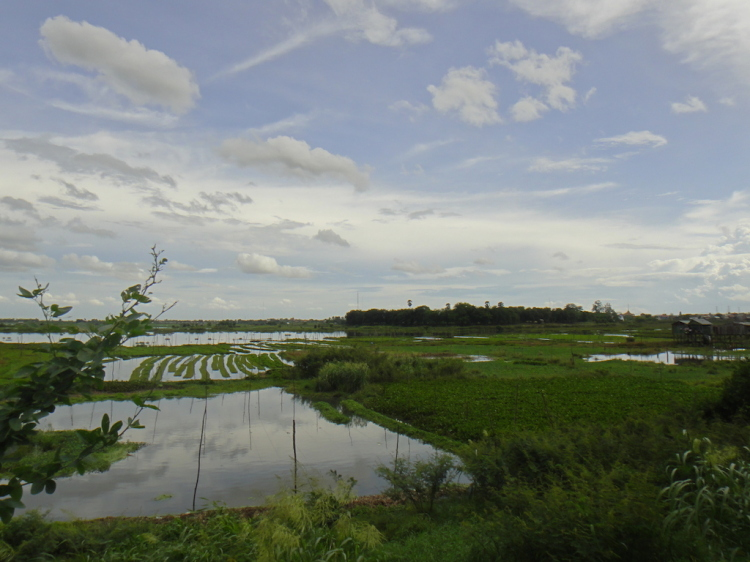Community First - Aquaponics and Fish Farming in Cambodia -FloatingGardens